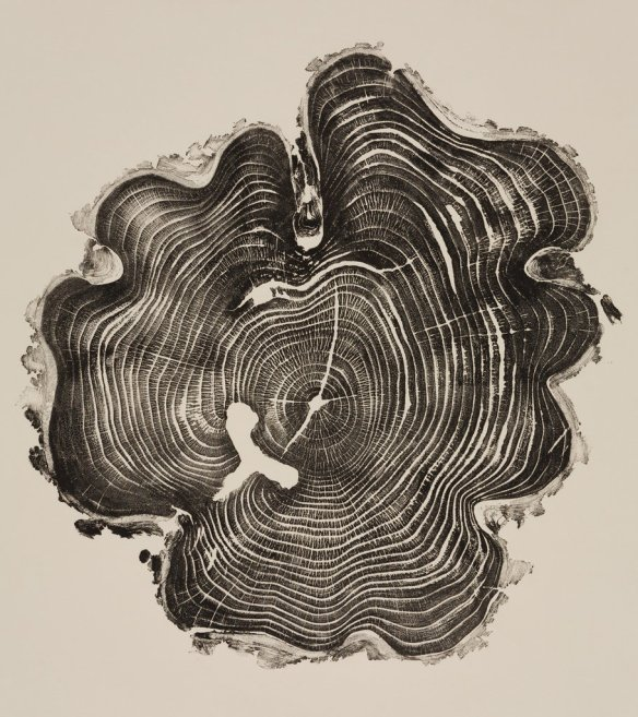 Tree Ring Print: Bryan Nash Gill